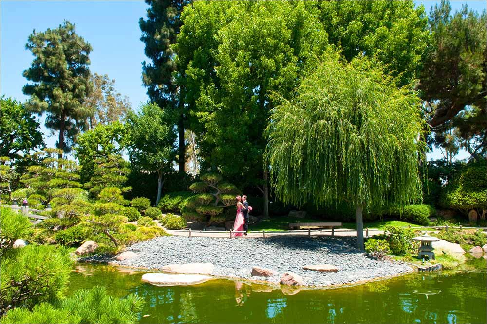 Bride and groom standing beside the ornamental Japanese lake
